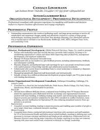 Sample Management Consultant Resume Management Consulting Resume Best Of Sample Consulting Resume 35