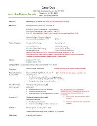 Employment Resume Sample Delectable Employment Gaps On Resume