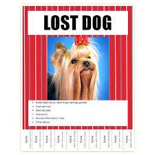 Lost Pet Flyer Maker Enchanting Missing Pet Poster Template Alternative Green Dog Photo 48 Lost Flyer
