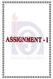 exam essay writing help free online