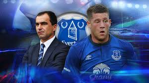 Image result for everton 2015