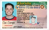 License Screening Number Starpoint Driver Security Blog - Driver's