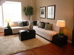Living Room Staging Home Staging Design Decor Modern Home Staging Design Ideas Modern