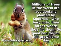 Wonderful Good Morning Quotes Best of Rishikajainwpcontentuploads2424iMilli