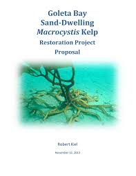 Sand Dwelling Kelp Restoration Project Proposal 11 12 13 By