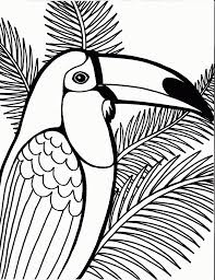 Small Picture Download Coloring Pages Parrot Coloring Page Parrot Coloring