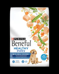 Purina Beneful Puppy Feeding Chart Beneful Healthy Puppy Dry Dog Food With Real Chicken