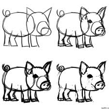 1000x1000 pig cartoon drawing in steps with photo