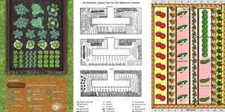 vegetable garden design ideas the best