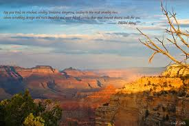 Grand Canyon Quotes Custom Quotes About Grand Canyon 48 Quotes
