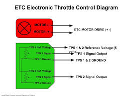 electronic throttle motor wires identification