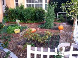 Small Picture No Grass Landscape Ideas For Front Yard Garden Trends