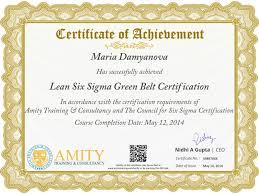 Resume Six Sigma Black Belt