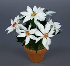 Weihnachtsstern 22cm Weiß Im Topf Ar Künstliche Pflanze Blumen Kunstpflanzen Kunstblumen Poinsettie