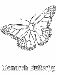 Color Book Butterfly Pictures Only Coloring Pages