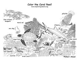 Coral Reef Coloring Page World Oceans Day Pinterest Coloring