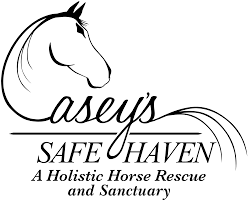 Image result for casey's horse rescue