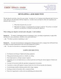 Resume Objective Manager Position Mesmerizing Resume Objective Management Position With Additional 4