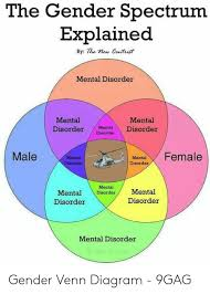 Gender Venn Diagram The Gender Spectrum Explained By The New Contist Mental