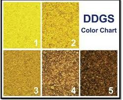 Grain Color Chart Grain Deliveries To China Hit Snag North P I Club