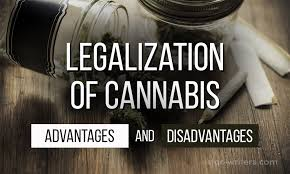 Drug Legalization Essay Legalization Of Cannabis Essay Advantages And Disadvantages