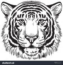 tiger face clipart black and white. Interesting Black Intended Tiger Face Clipart Black And White R