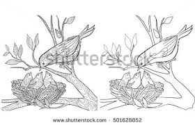 Small Picture Bird Feeding Stock Images Royalty Free Images Vectors