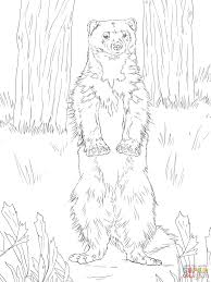 Small Picture Wolverine Coloring Page Handipoints Coloring Coloring Pages