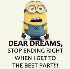 Funny Quotes Dreams Best Of Funny Quotes I've Ever Seen Dear Dreams Stop Blow Your Mind