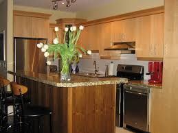 Granite Kitchen Accessories Kitchen Island Decorative Accessories Best Islands Design Solid