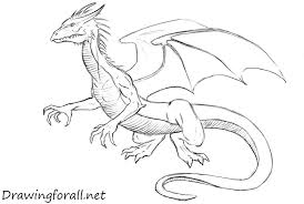 drawing of dragon how to draw a drawingfl net