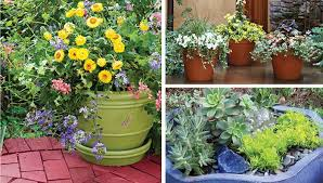 garden container ideas. garden container ideas r