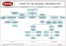 General Organization Chart Pakel Ltd