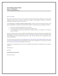 Cio Cover Letter Best Resume And Cover Letter Writing Services Sample Cover