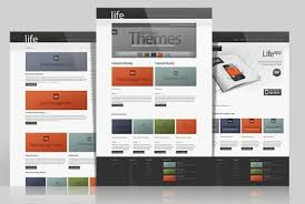 Small Picture Life Extremely Versatile WordPress theme