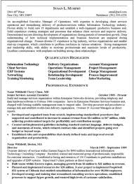 Resume Executive Summary Examples Magnificent Resume Executive Summary Good Example Essential But On Resumes