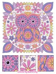 Groovy Owls Coloring Book By Thaneeya Mcardle Thaneeyacom