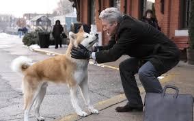 10 film sui cani da vedere