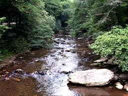Fly Fishing The Chattooga River For Trout