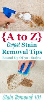 Roundup of over 30 articles all about carpet stain removal based on the  type of stain ...