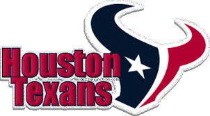 Houston Texans | 50 STATES: Texas | Pinterest | Houston texans ...