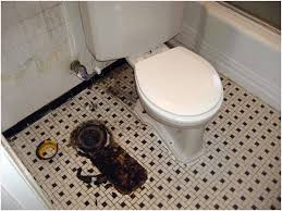 bathroom smells. bathroom smells like sewer stunning on throughout if toilet isnt sitting pretty air can be u