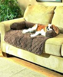 sofa covers for leather sofas couch cover pet furniture amazing and wonderful best non slip sofa covers for leather