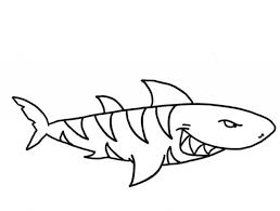 Tiger Shark Coloring Page regarding Encourage in coloring page ...