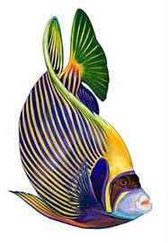мир рыб: лучшие изображения (374) в 2019 г. | Рыба ...