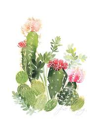 """Résultat de recherche d'images pour """"cactus"""""""