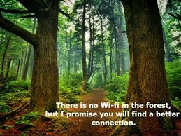 40 Inspirational Camping Quotes That You Should Know Extraordinary Forest Quotes