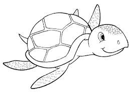 Sea Turtle Coloring Pages Cookie Consent Sea Turtle Coloring Pages