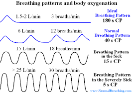Abnormal Breathing Patterns New Types Of Respiratory Patterns With Charts