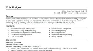 Resume Summary Examples For Students Resume Pro